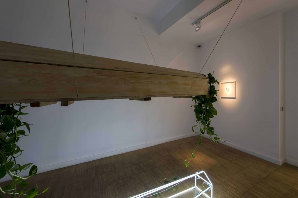 Rest in Peace, 2018, Coffin, Neon, Ivy, 170x62x230 cm,